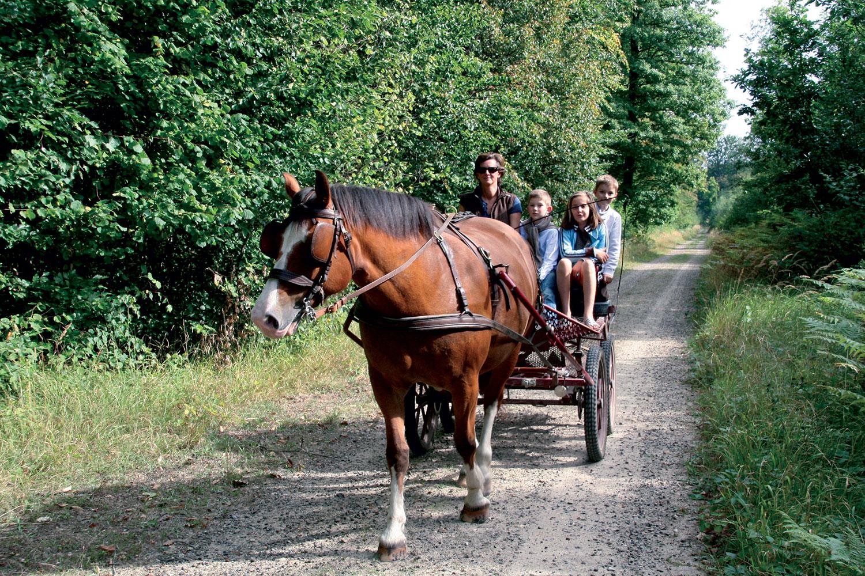 séjour tourisme Oise : des activités équestres